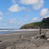 Cape Disappointment State Park Beach