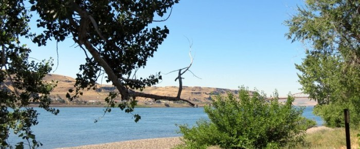 Campground Reviews: Maryhill State Park